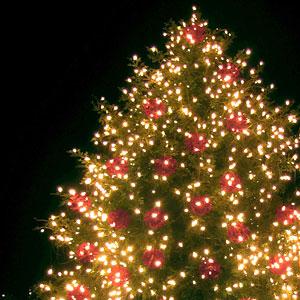 クリスマスソング[邦楽編]