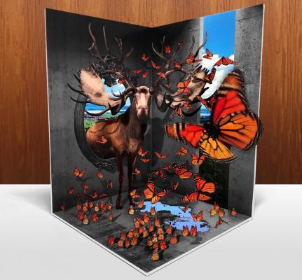 3d_butterfly